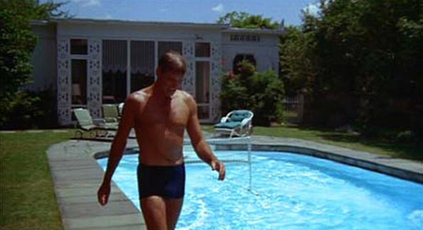 an analysis of the short story the swimmer by john cheever In reunion by john cheever we have the theme of disappointment, connection, identity, separation, regret and alcoholism taken from his collected stories collection.